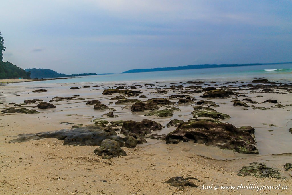Kalapathar Beach at Havelock Island