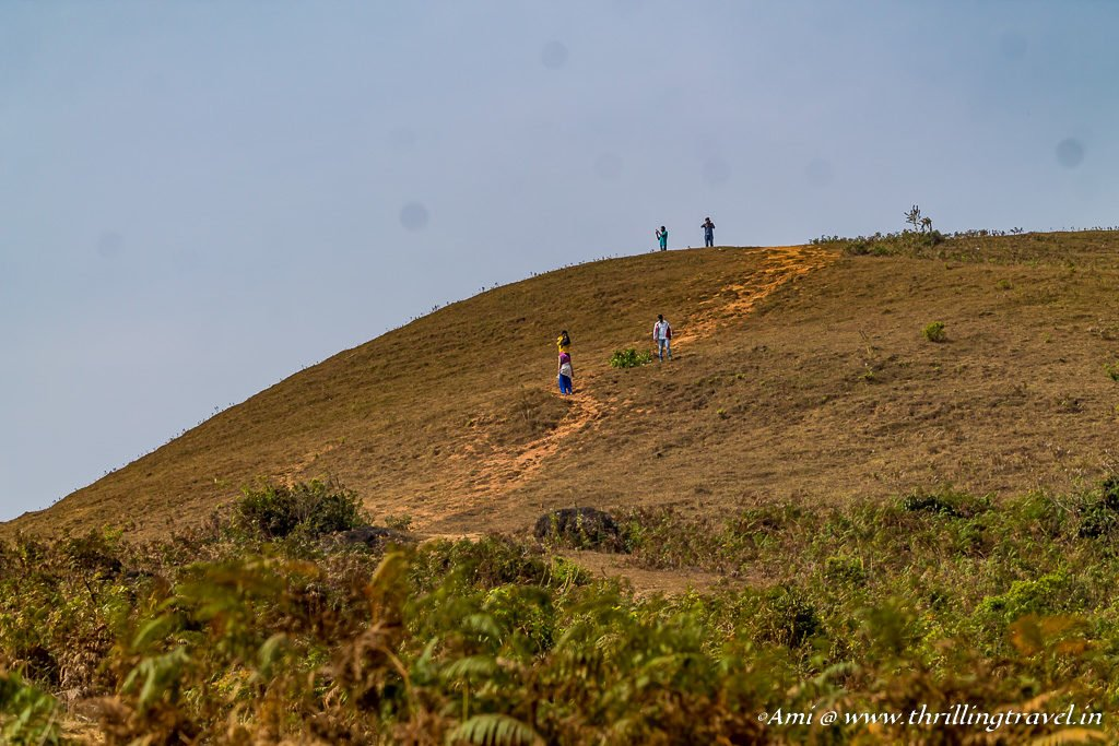 Pandarva Gudda Trek in Sakleshpur