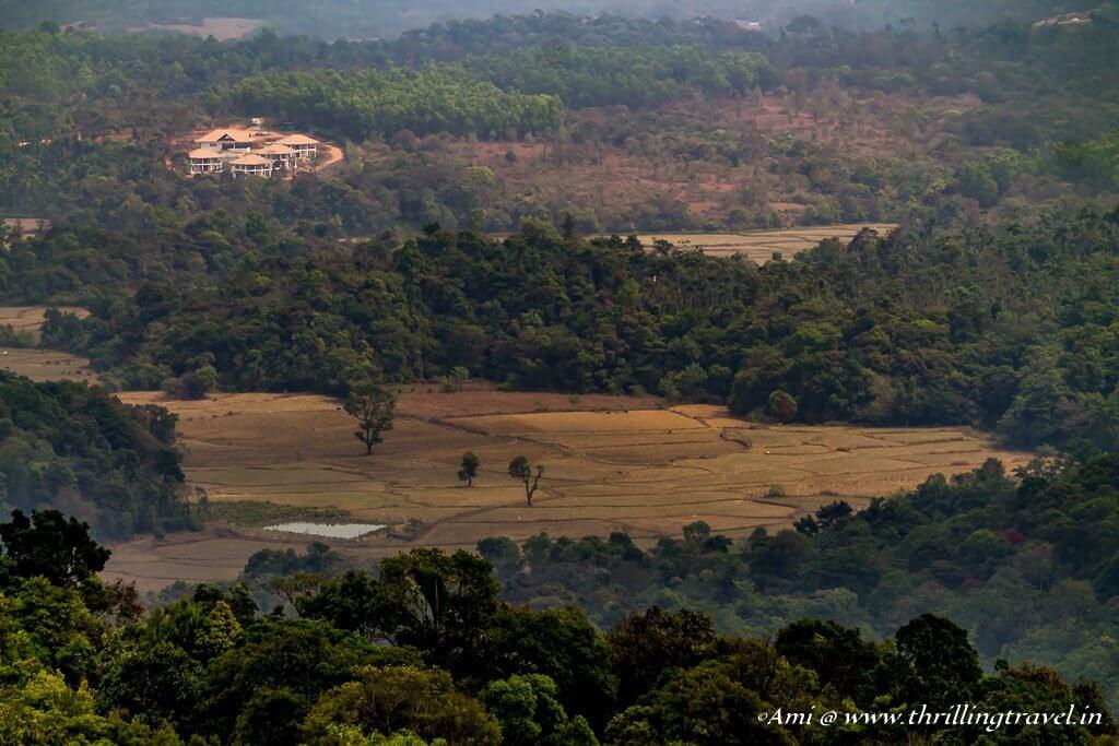A view of Sakleshpur from Pandharva Peak