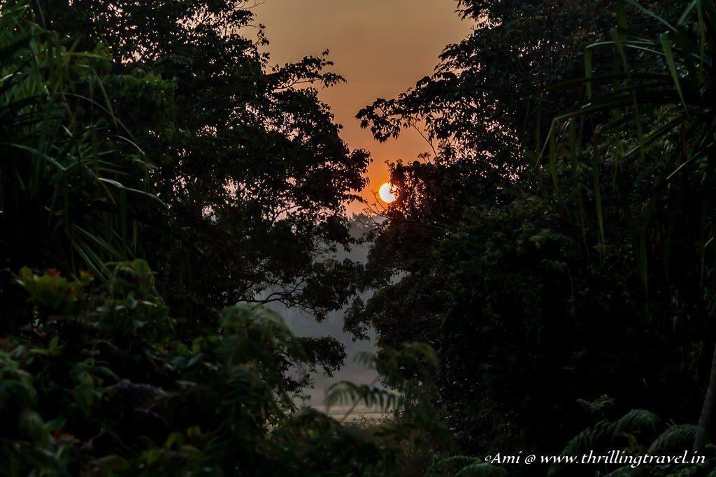 Sunrise at Sakleshpur