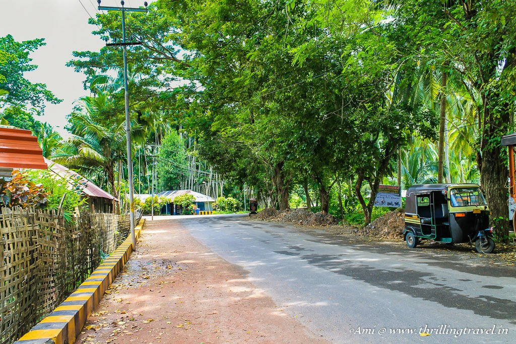 The roads of Havelock Islands