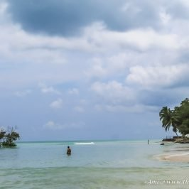 Vijaynagar Beach on Havelock Island