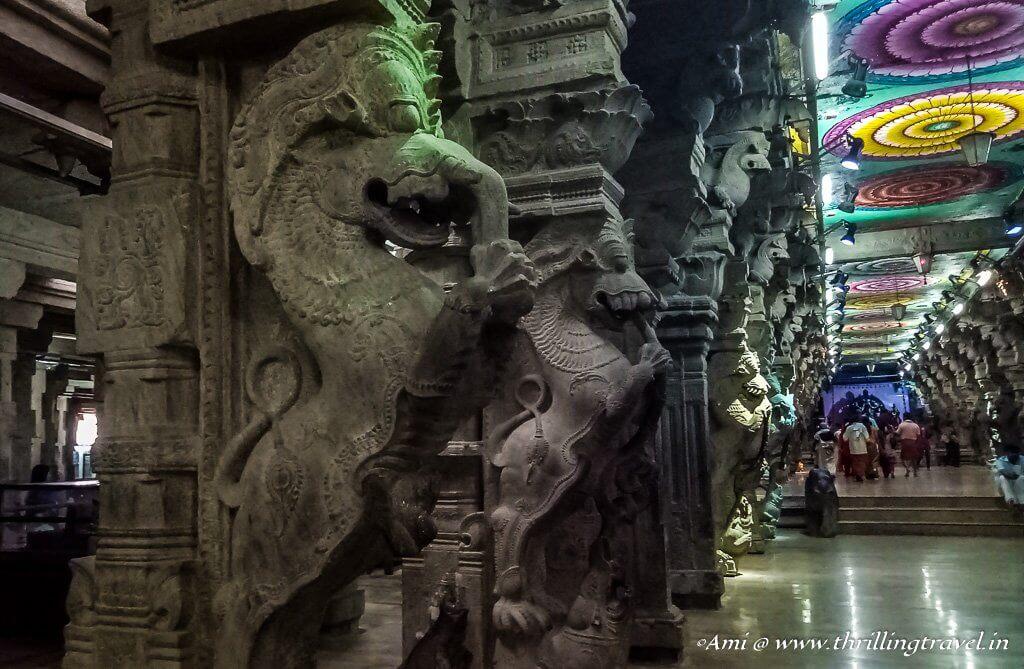 Yellis at 1000 pillar hall at the Meenakshi Temple