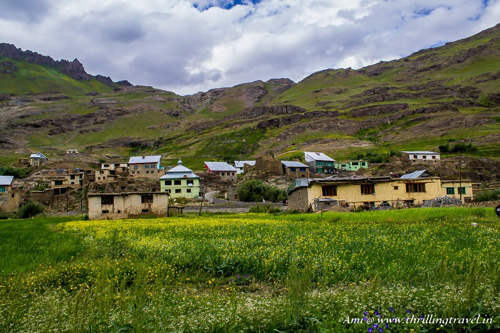 Ladakh Travel Guide : Best time to visit Ladakh is July to October. Picture taken at Drass