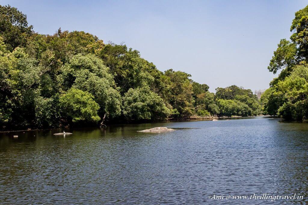 Kuruva Island, Wayanad, Kerala