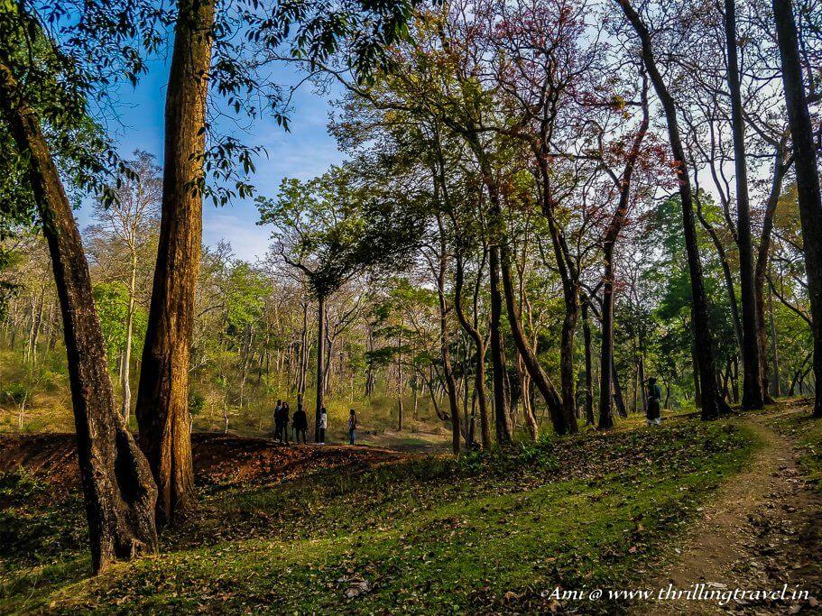 Nature Trails in Wayanad, Kerala