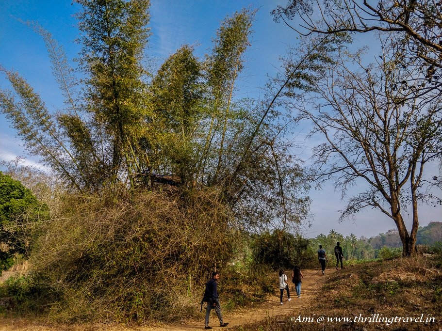 Nature Trails by Sterling Wayanad as a part of their experiential holiday program