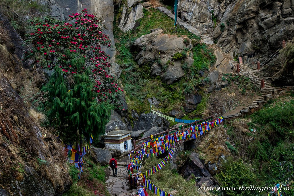 Last stage of Paro Taktsang Hike