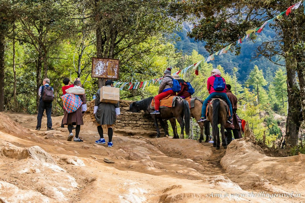 The first break for the mules along the Paro Taktsang Hike