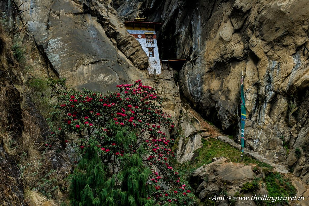 Yeshe Tsogyal Cave along the Paro Taktsang Hike