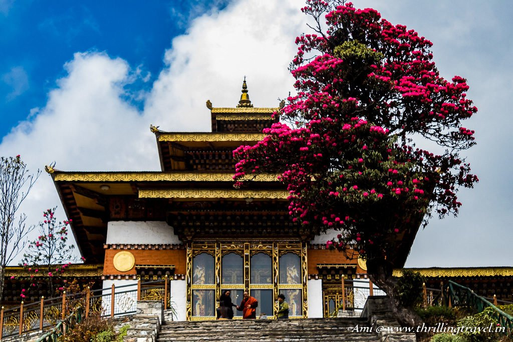 Bhutan Travel Guide to the best time to visit. Spring blooms at the Dochula Temple