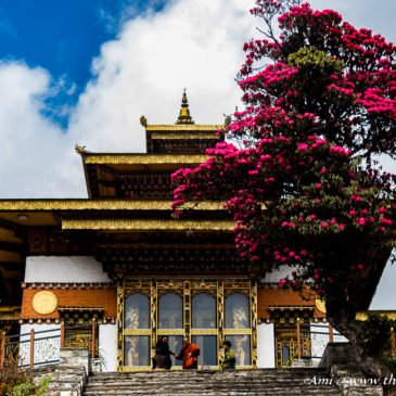 Bhutan Travel Guide: Your Handbook of Travel Tips