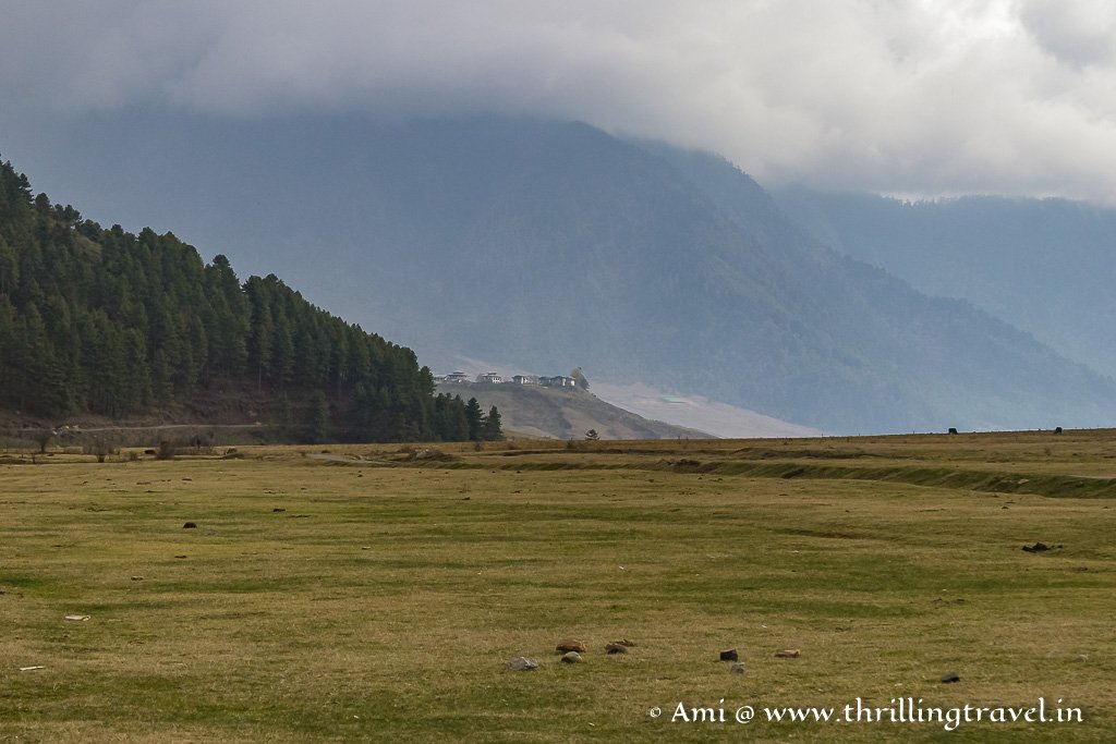 Home of the Black Necked Cranes - Phobjikha Valley