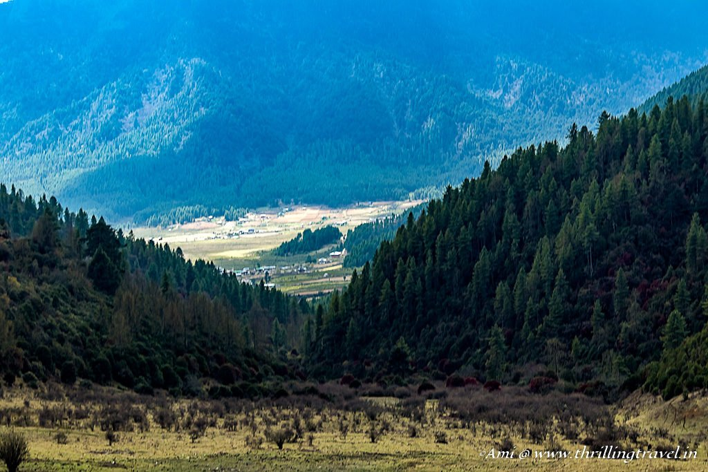 First Glimpse of Phobjikha Valley