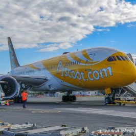 Flyscoot Dreamliner in Gold Coast City, Australlia