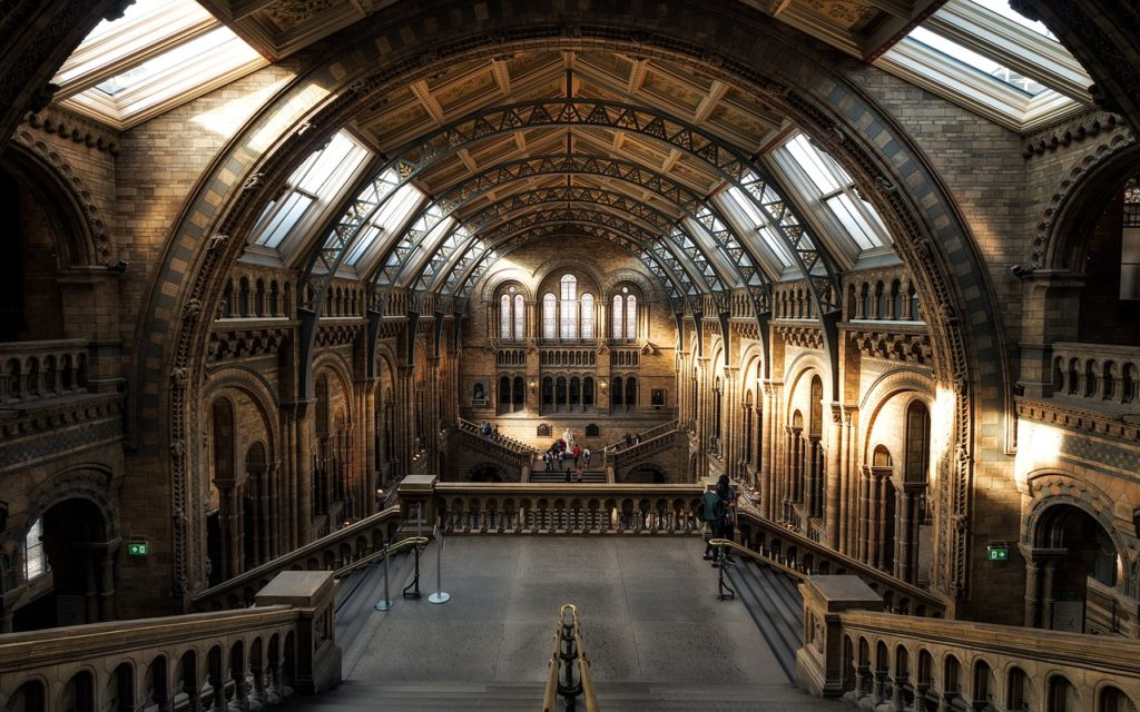 Natural History Museum - Things to do in London