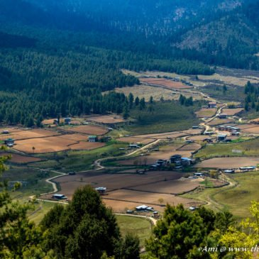 Phobjikha Valley: Silence of the Black Mountains of Bhutan