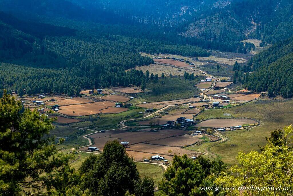Phobjikha Valley as seen from Gangtey Monastery