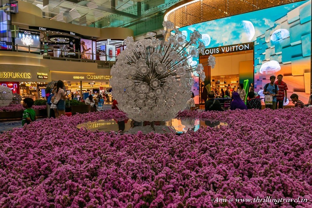 Shopping and Sights at Changi Airport