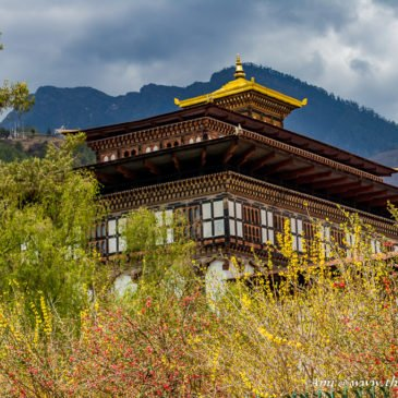 Tashichho Dzong: More than just the Summer Capital of Bhutan