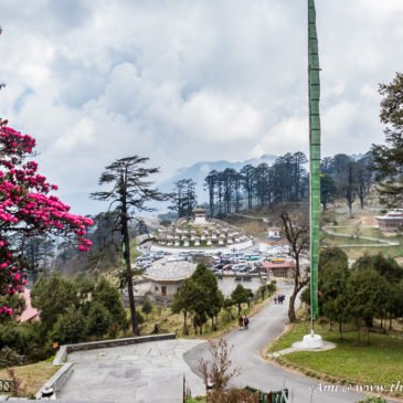 5 reasons why I loved Dochula Pass in Bhutan