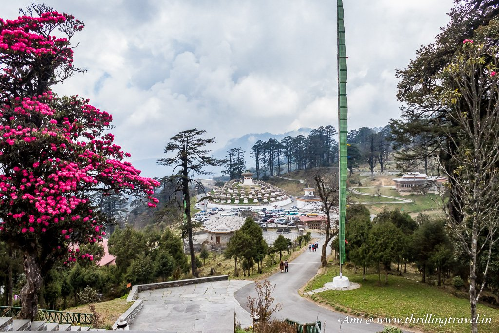 Dochula Pass in Spring