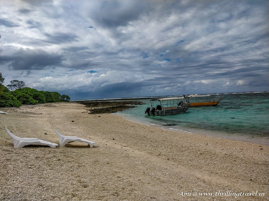 The beautiful beach outside the dining hall of the Lady Elliot Island