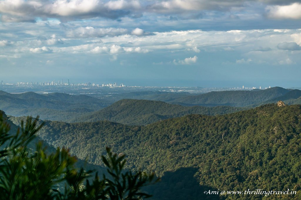 Best of all lookout, Springbrook National Park
