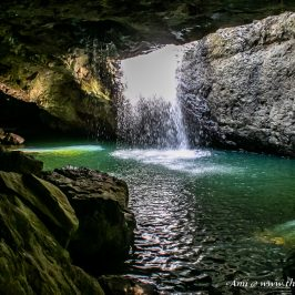 The Natural Bridge Cavern in Springbrook National Park