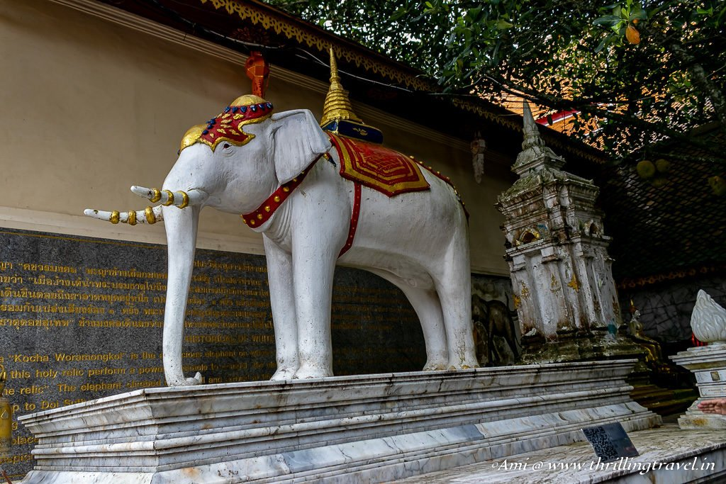 Shrine of the White Elephant at Wat Phra That Doi Suthep Temple, Chiang Mai