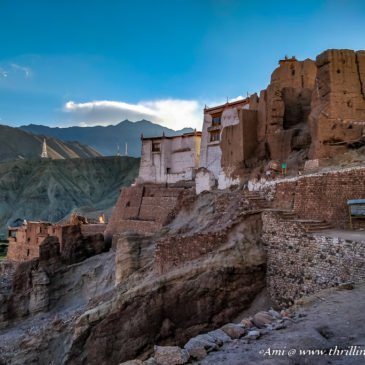 Scouting the Ruins of Basgo in Ladakh