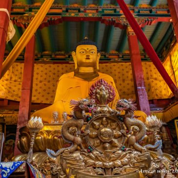 Enlightenment at the Hemis Monastery in Ladakh