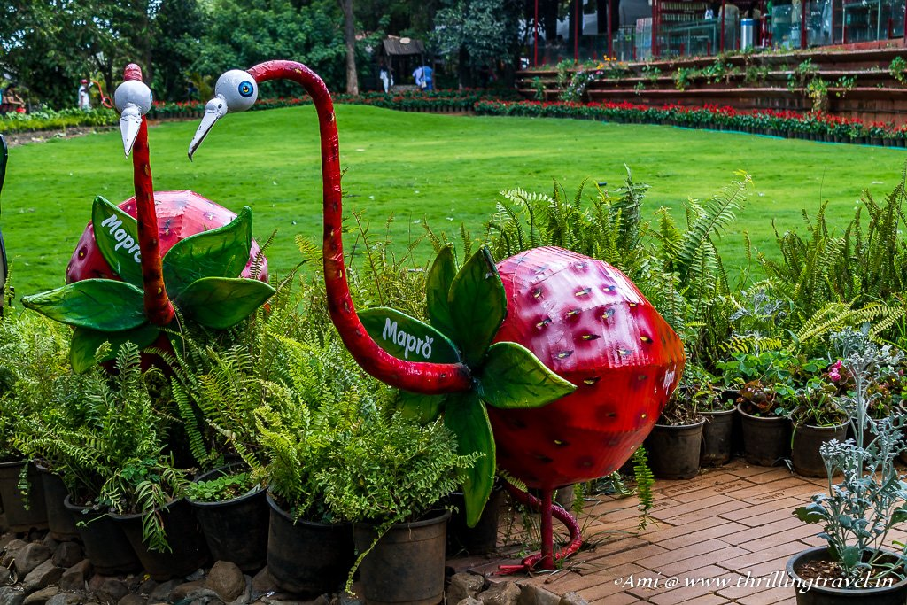 Mapro Gardens - One of the Places to visit in Mahabaleshwar