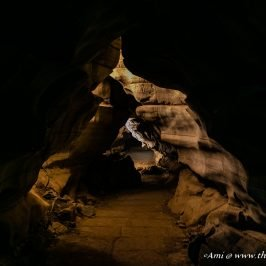 The long passages of Belum Caves