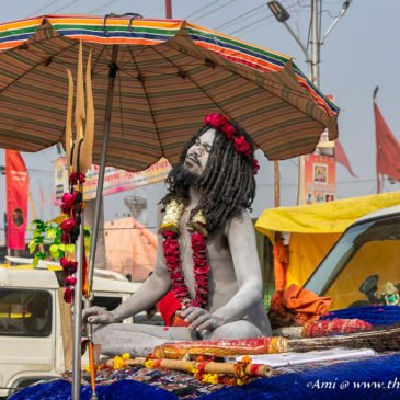 In the thick of the World's largest gathering – Kumbh Mela