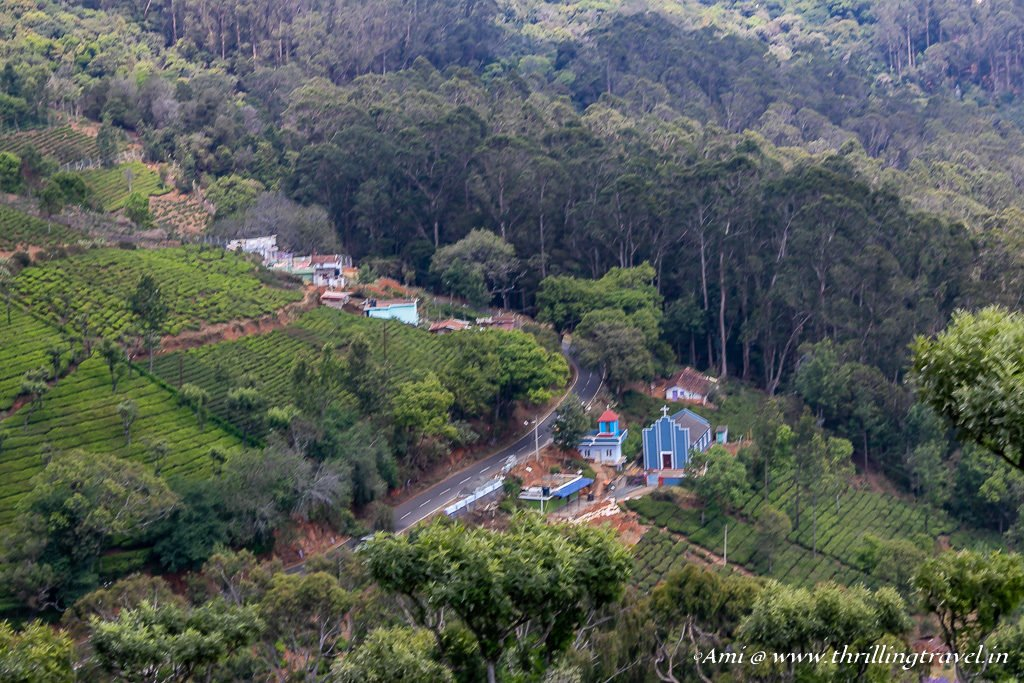 The Cool Valleys of Ooty