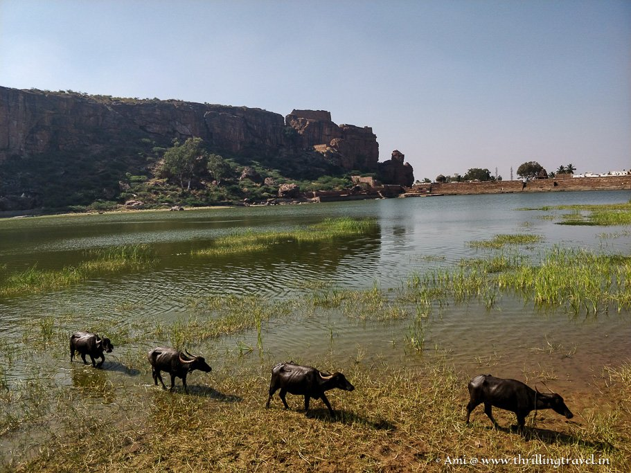 Sights along Agasthya Lake in Badami