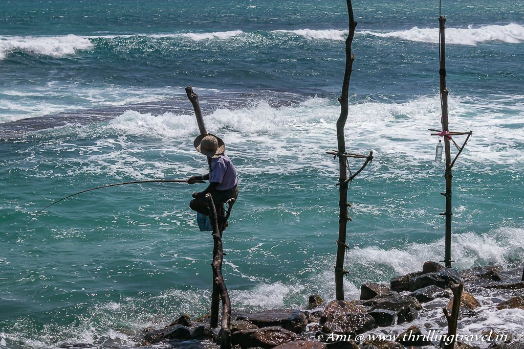 Catch the Stilt Fishermen when you do a day trip from Mirissa to Galle