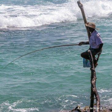 Beach Hopping on South Coast of Sri Lanka: From Mirissa to Galle