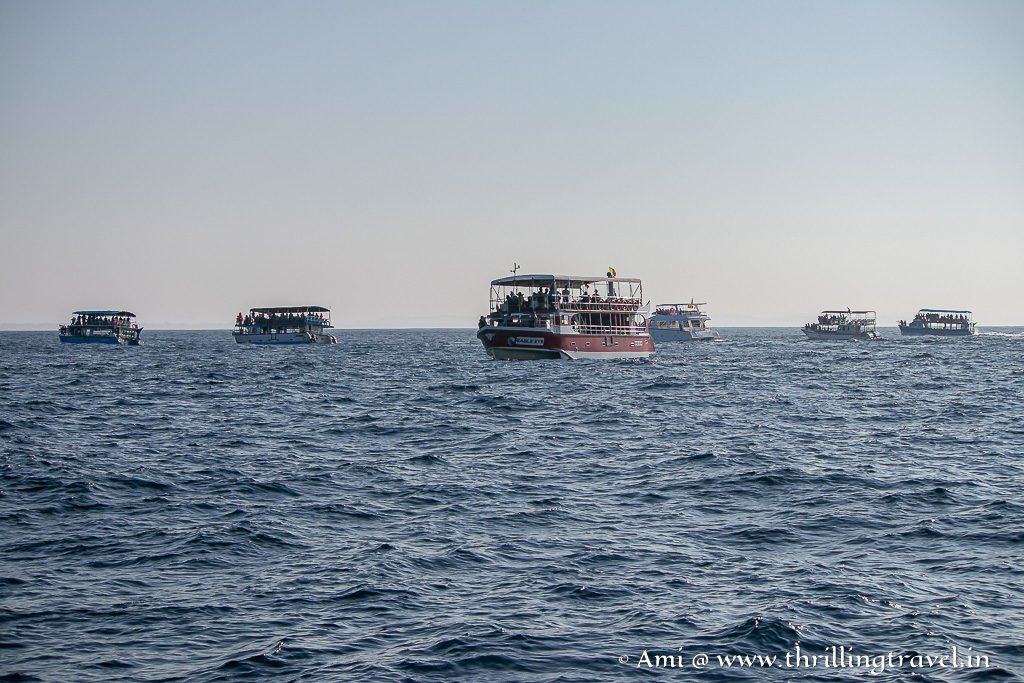 Boat tours for Whale Watching in Mirissa