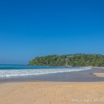 Things to do in Mirissa, Sri Lanka