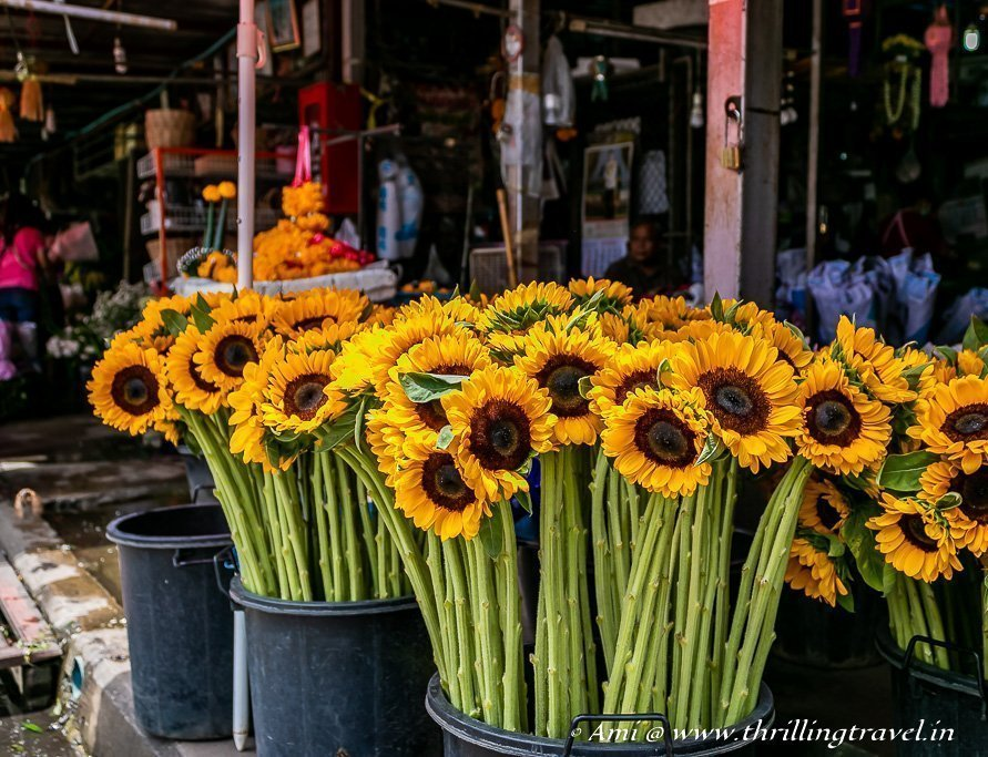 The Flower Market in Chiang Mai