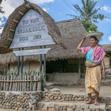 Traditions & Tales from the Sasak Village , Lombok