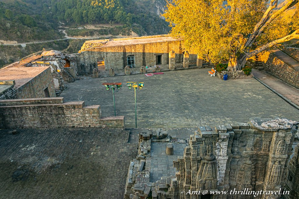 The Peepal tree courtyard of Kangra Fort