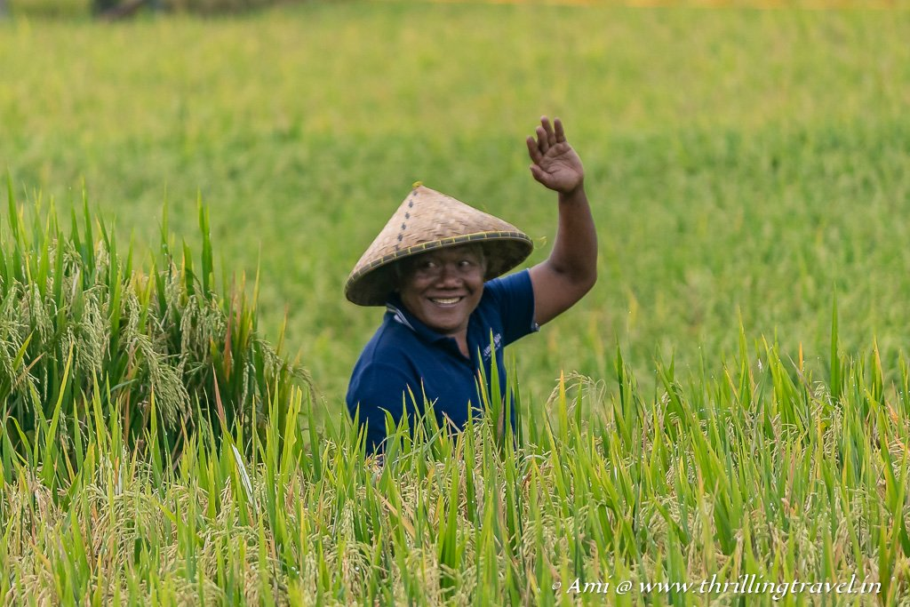 Cheerful local waving back at us from the rice fields of Ubud