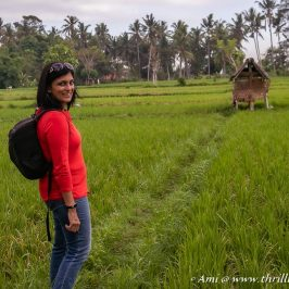 A walk through the rice fields to discover Balinese Architecture