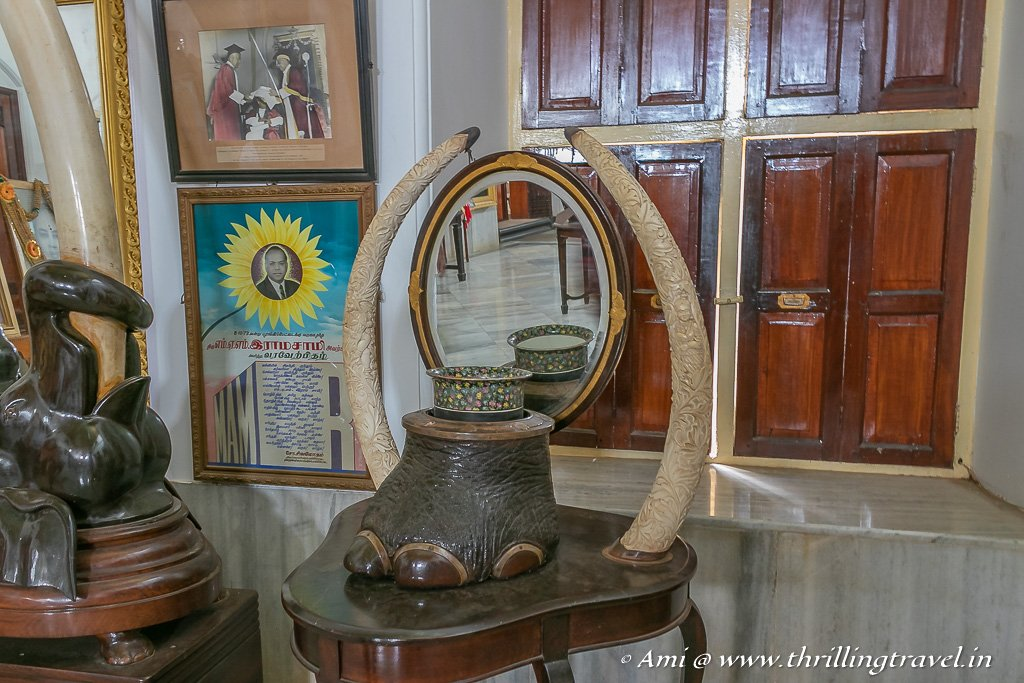 The elephant tusk and foot displayed inside Maharaja's Palace in Kanadukathan