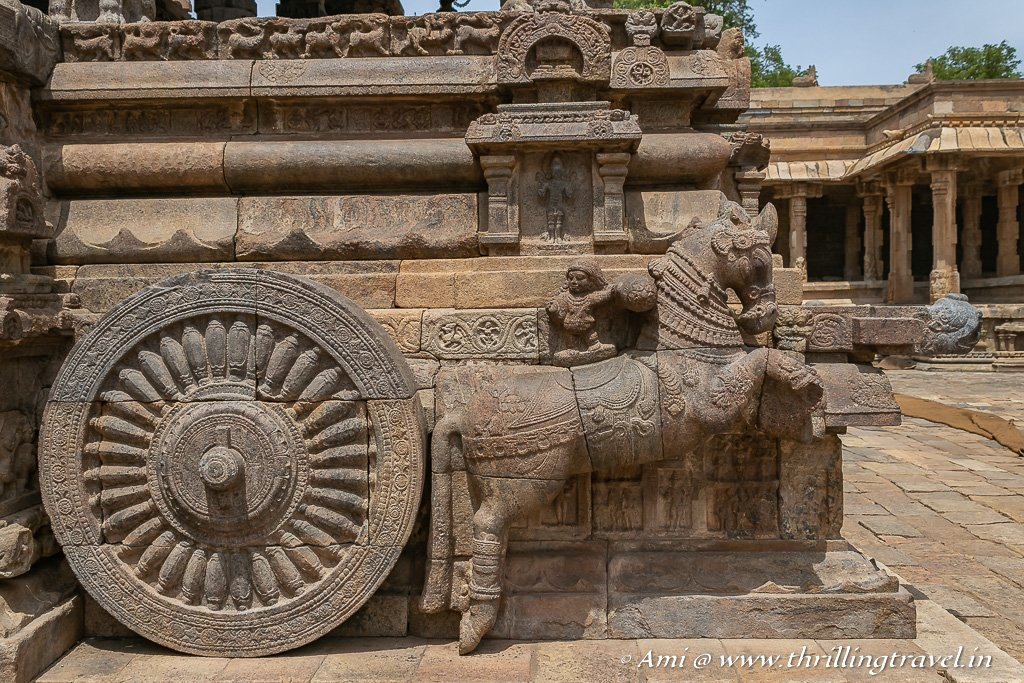 Close up of the horse and the wheel of the Chariot at Airavatesvara Temple