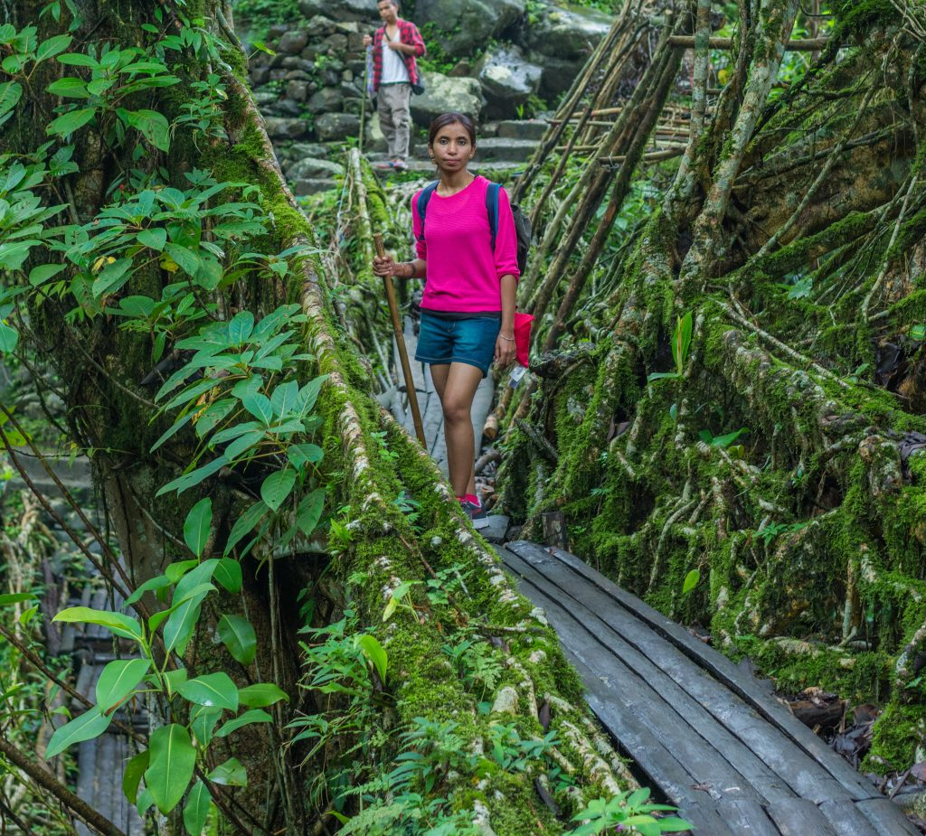 Hiking to the Double Decker Living Root Bridge will take you past smaller bridges
