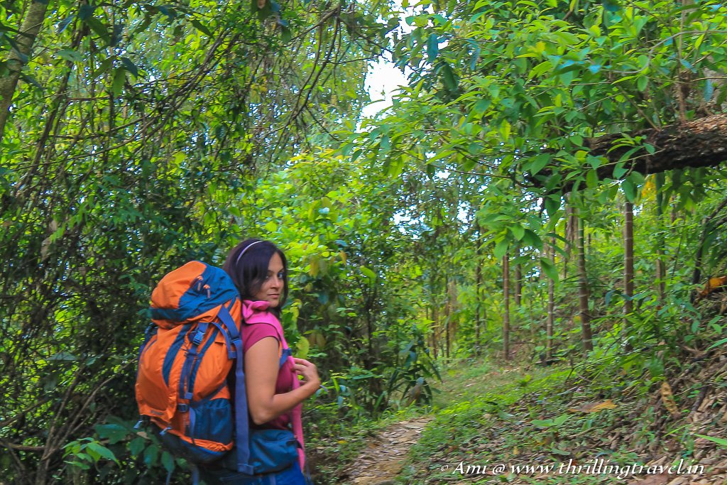 Exploring the forests of Mawlynnong